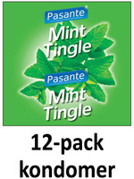 Pasante Mint 12-pack
